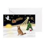 Night Flight/Golden 12 Greeting Cards (Pk of 10)