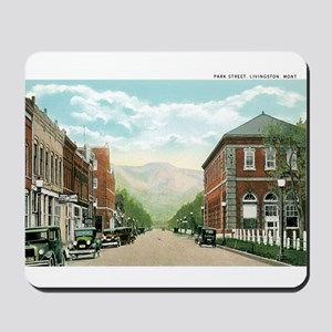 Livingston Montana MT Mousepad