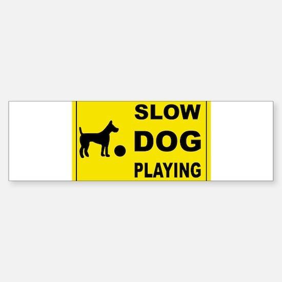 SLOW DOG PLAYING Bumper Bumper Bumper Sticker