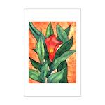 Red Calla Lily Watercolor Mini Poster Print