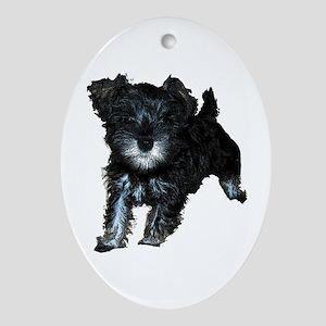 Mini Schnauzer Puppy Oval Ornament