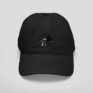 Mini Schnauzer Puppy Black Cap