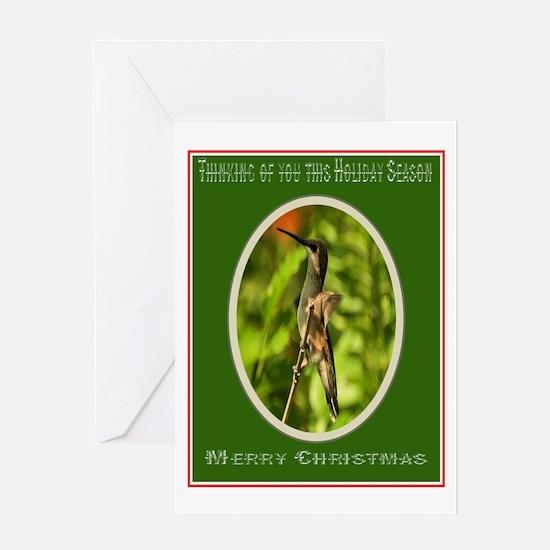 Hummingbird Christmas Greeting Card Greeting Card
