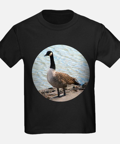 Canadian Goose- T