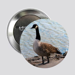 "Canadian Goose- 2.25"" Button"