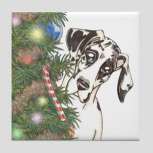 Holiday NH Tile Coaster