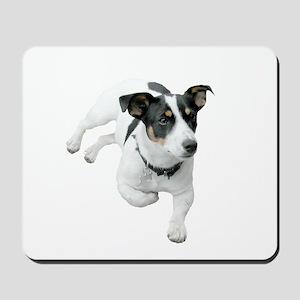 Jack Russel Dog Mousepad