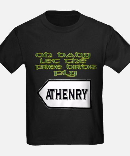 Fields of Athenry T