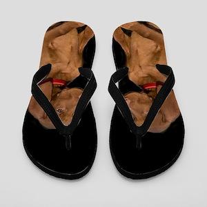 Vizla dog Flip Flops