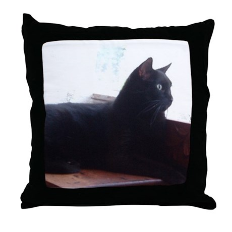 Black Cat In Window Throw Pillow