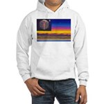 new world flag Hooded Sweatshirt