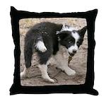 Border Collie Puppy Pillow