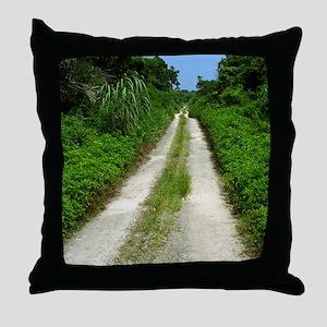 Taketomi Dirt Road Throw Pillow