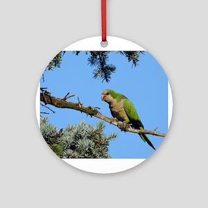 Monk Parakeet Ornament (Round)