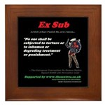 Article 3 Ex Sub Framed Tile