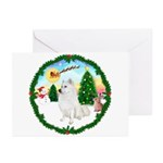 Take Off - American Eski Greeting Cards (Pk of 10)