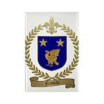 NADEAU Family Crest Rectangle Magnet (10 pack)