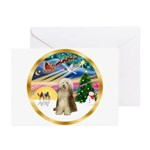 XmasMagic/Beardie #16 Greeting Cards (Pk of 10)