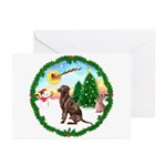 Take Off1/Lab (choc) Greeting Cards (Pk of 10)