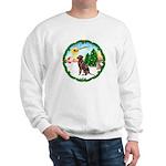 Take Off1/Lab (choc) Sweatshirt
