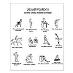 Sexual Positions Small Poster