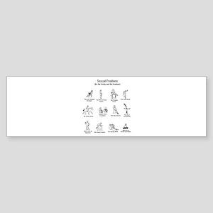 Sexual Positions Bumper Sticker