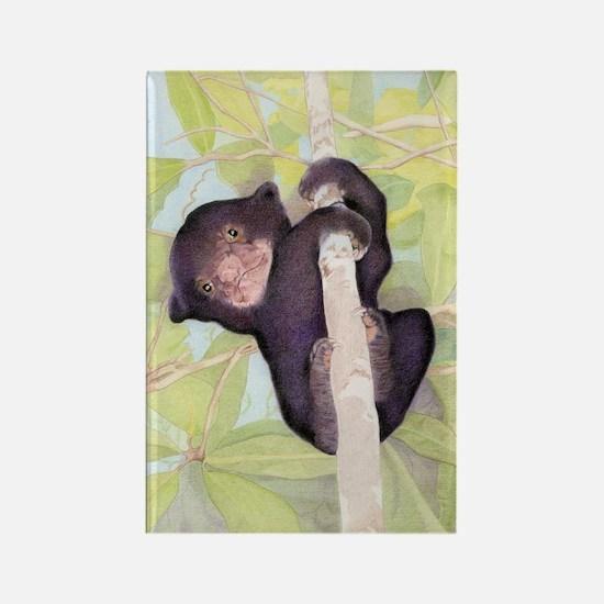 Sun Bear Cub Rectangle Magnet (10 pack)