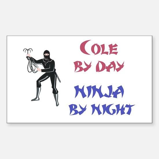 Cole - Ninja by Night Rectangle Decal
