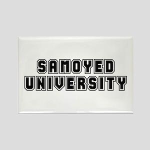 University Rectangle Magnet