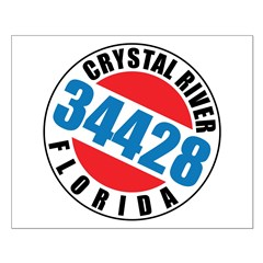 https://i3.cpcache.com/product/320279443/crystal_river_34428_posters.jpg?side=Front&height=240&width=240