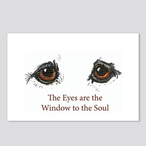 Samoyed Eyes Postcards (Package of 8)