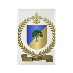 PARADIS Family Crest Rectangle Magnet