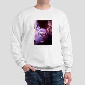 Purple Newf Sweatshirt