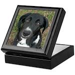 Border Collie Dog Keepsake Box