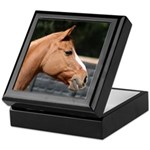 Dun Horse Head Keepsake Box