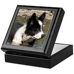 Border Collie Puppy Keepsake Box
