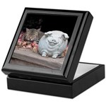 Cat and Pig Keepsake Box
