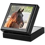 Chestnut Horse Keepsake Box