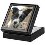 Border Collie Pup Keepsake Box