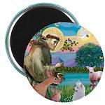 St Francis/Am Eskimo #3 Magnet