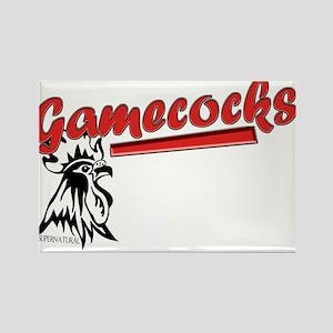 Team Gamecocks Rectangle Magnet
