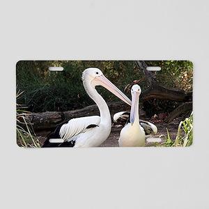 Pelicans at zoo Aluminum License Plate