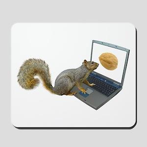 Squirrel at Computer Mousepad