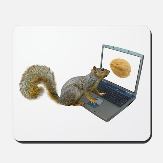 Squirrel at Computer Mousepad