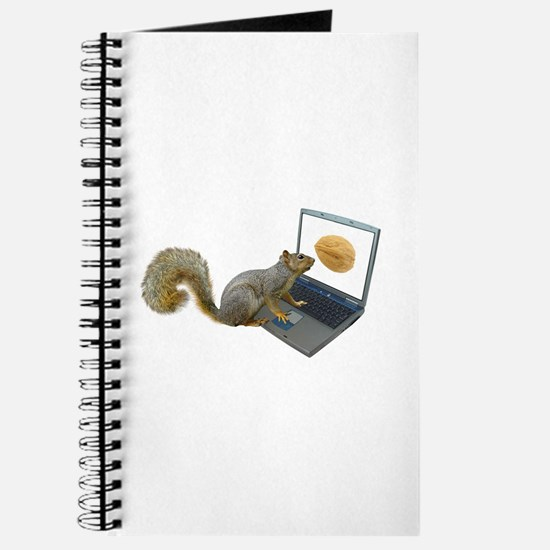 Squirrel at Computer Journal