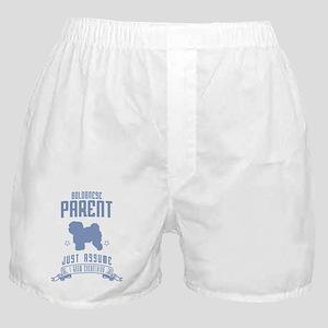 Bolognese Boxer Shorts