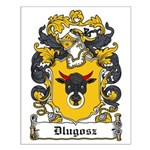 Dlugosz Family Crest Small Poster