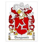 Drogomir Family Crest Small Poster