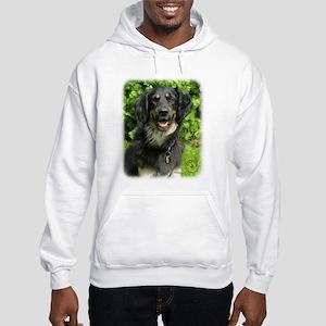 Hovawart 9W009D-019 Hooded Sweatshirt