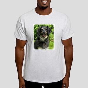 Hovawart 9W009D-019 Light T-Shirt